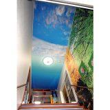 天井壁紙プリント:施工例